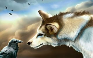 Animal Symbiosis in Astrology. Wolf and Raven image from (https://media.photobucket.com/image/raven and wolves/Aniu_Lonewolf/Wolves/Wolf-and-Raven.jpg?o=7)
