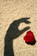 Healing the Astrological Shadow.  Image: PROTECTION © Veronika Sussmannova | Dreamstime.com